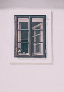 Cat Inside a Window
